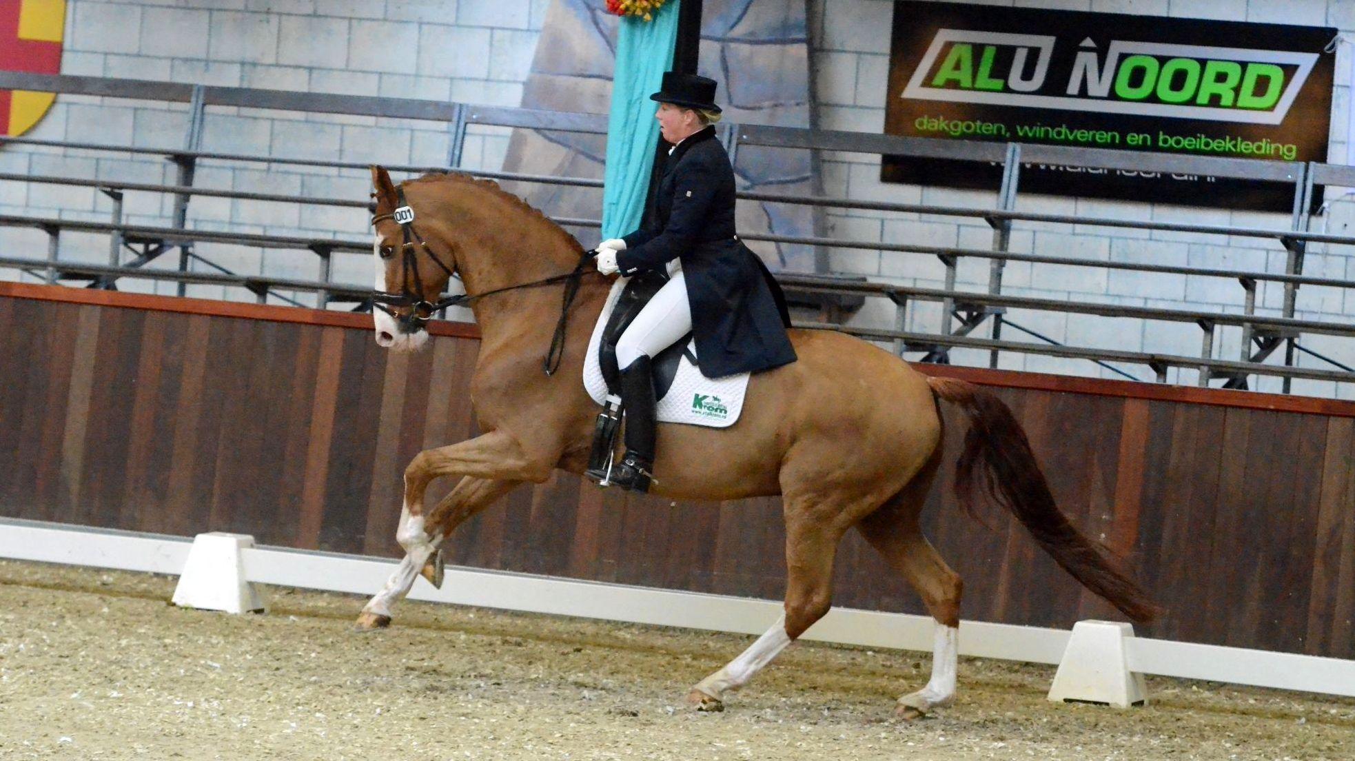 Annemieke Vincourt opnieuw winnaar op dressuurdag Indoor Tolbert -