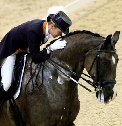schimmel bij paarden