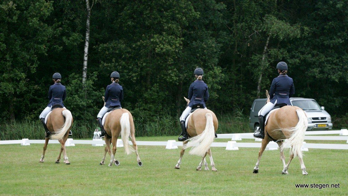 Het Friese viertal Goud4Goud werd KNHS-kampioen op de Hippiade voor pony's.
