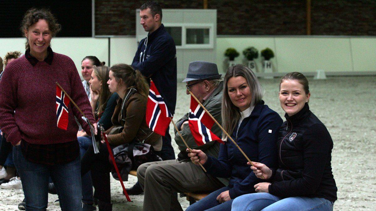 Deense fans tijdens het EK.