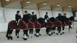 Geslaagde slotdag Europees kampioenschap Friese dressuurpaarden