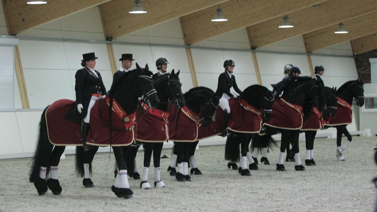 De winnaars van het Europees kampioenschap Friese dressuurpaarden op een rij.