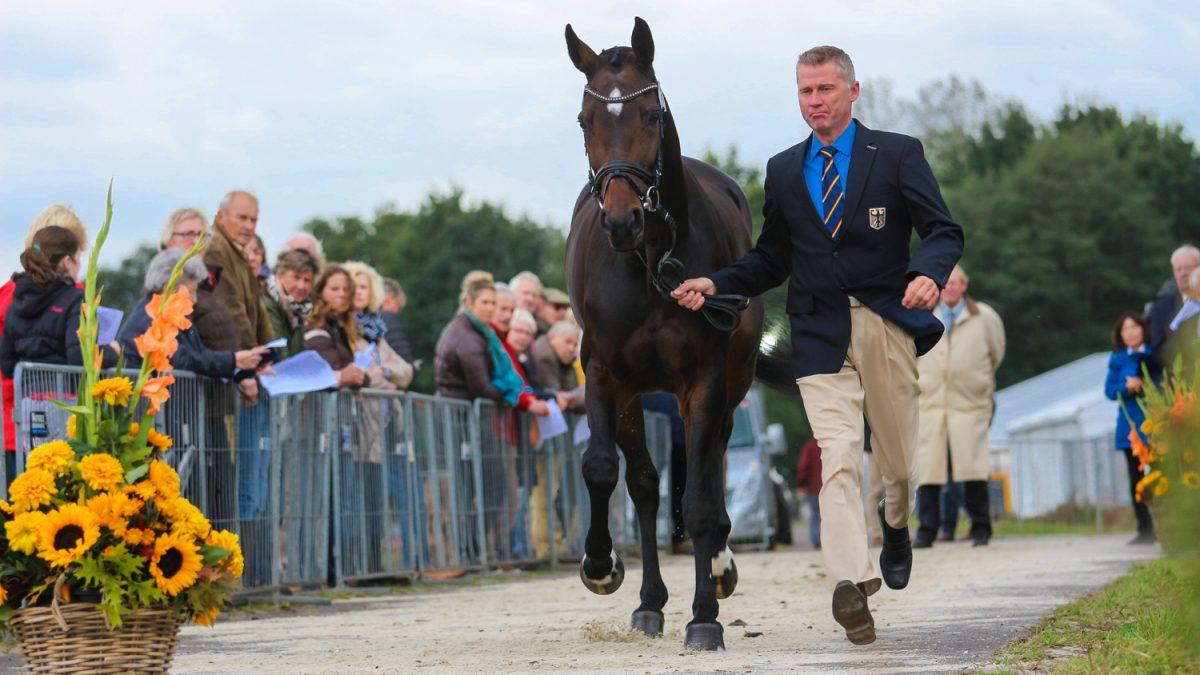 Military Boekelo. Andreas Dibowski tijdens de keuring met zijn paard FRH Corrida.