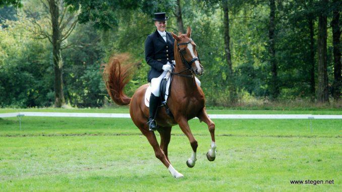 Annet Koning behaalde bij het CH Eext met Sebastiaan R prachtige resultaten in de lichte tour.