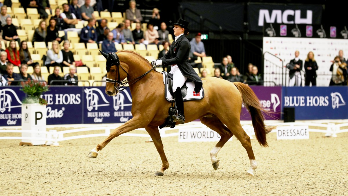 Catherine Dufour en Atterupgaards Cassidy tijdens hun winnende proef in Herning. foto: FEI   Everhorsephoto.com