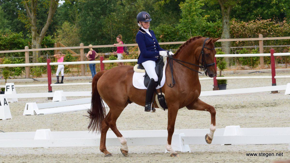 Jacqueline Windt en Frodo tijdens hun kür bij het Drents kampioenschap.