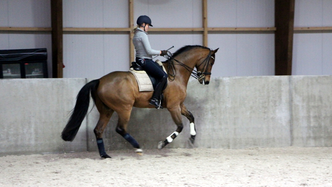 Eline Klont en Arragon tijdens de training.