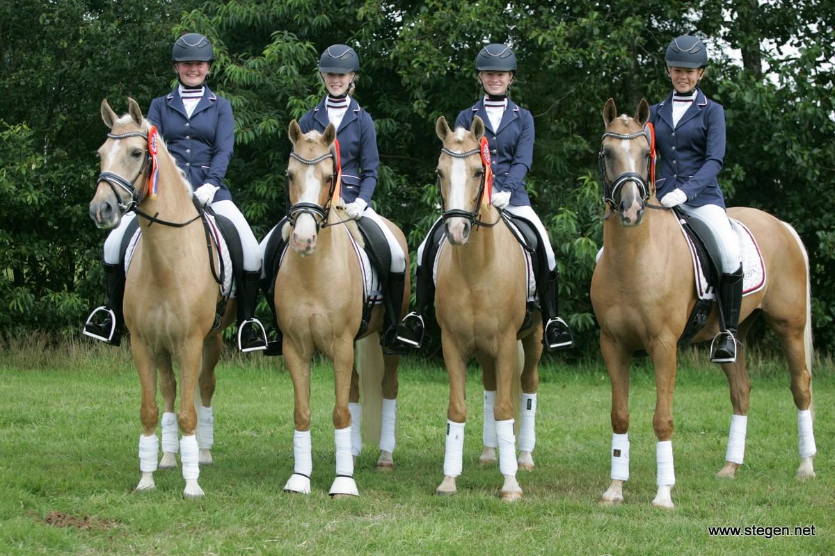 Eerste Friese titels verdeeld: Goud4Goud kampioen bij viertallen
