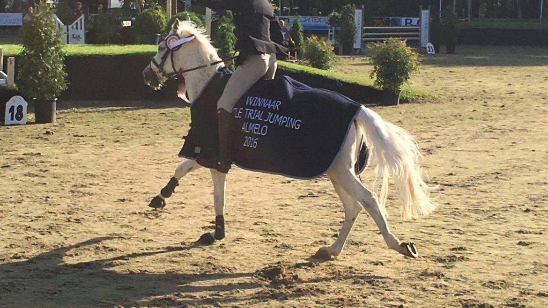 Ponyruiters Gerrit Veenstra en Anna-Sophie Huisman succesvol bij Almelose Ruiterdagen