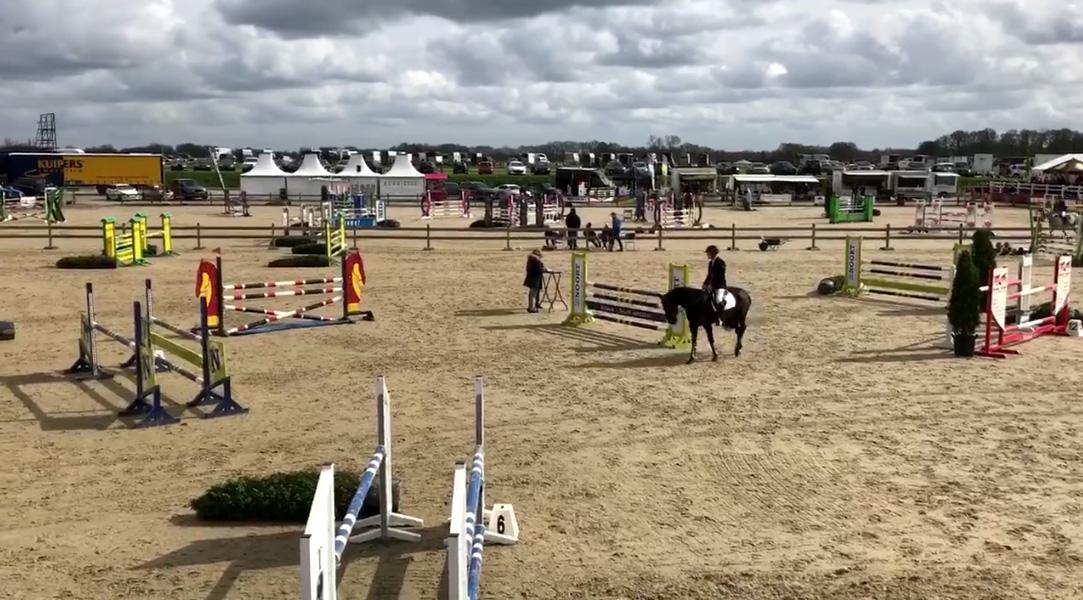 Ponyruiter Gerrit Veenstra scoort in KNHS-Hartog Lucerne Trophy Albergen