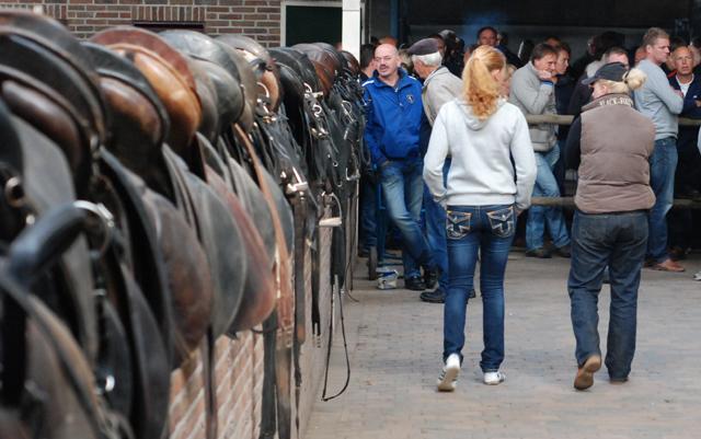 Paarden hippisch centrum Emmen nog niet geveild