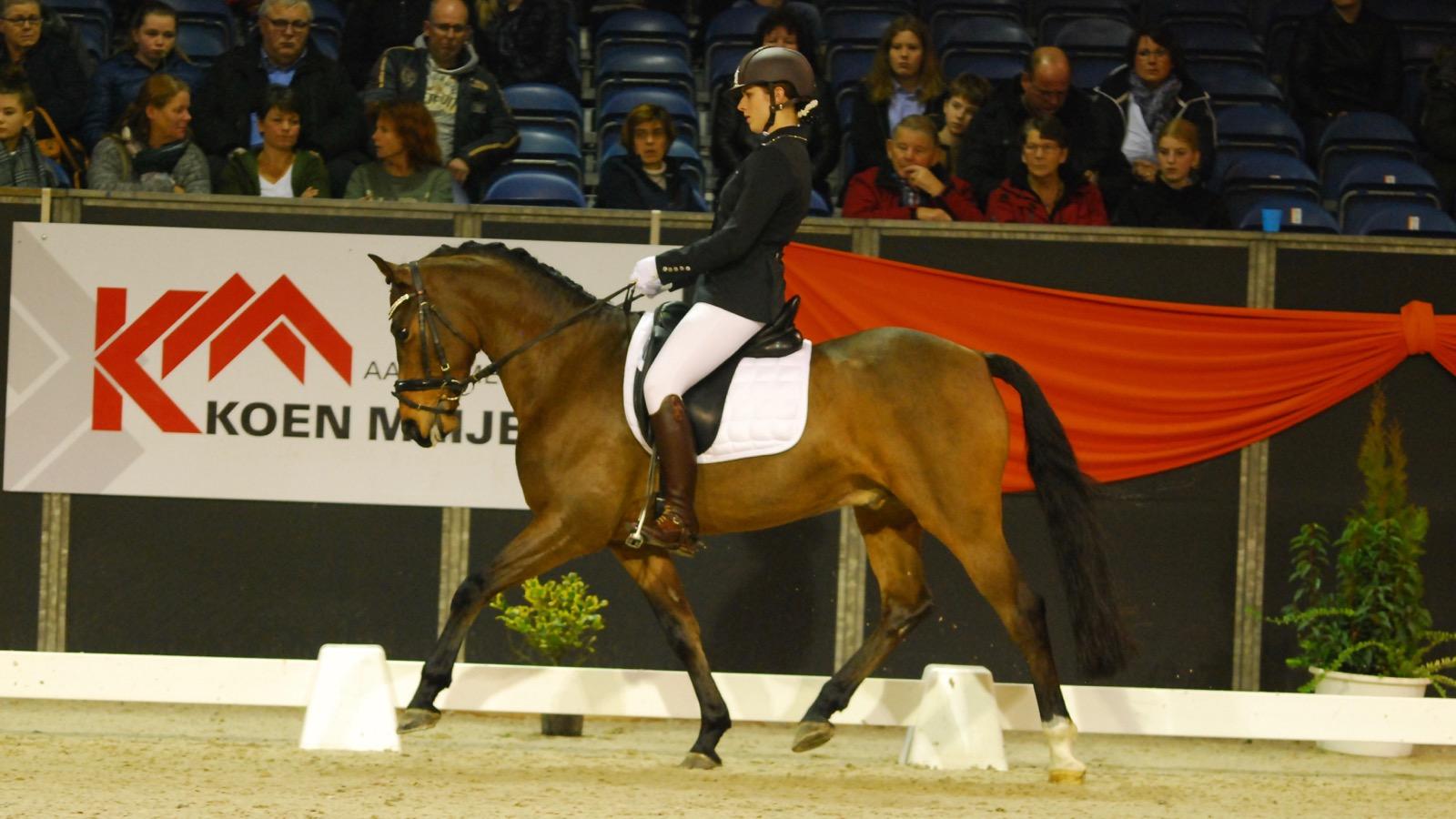Indoor Groningen: succesvol afscheid ponysport voor Henrieke Westerhuis