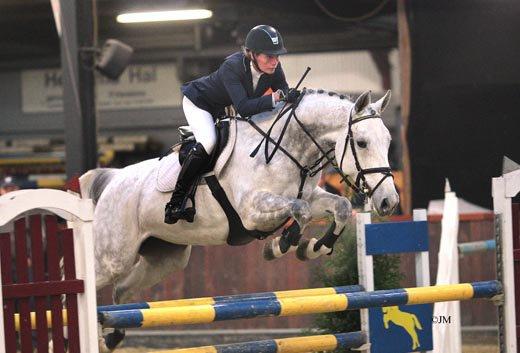 SFN stalt paarden bij Schröder en Dubbeldam