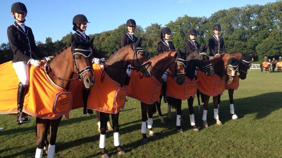 Mooie prestaties ponyruiters op Hippiade Ermelo