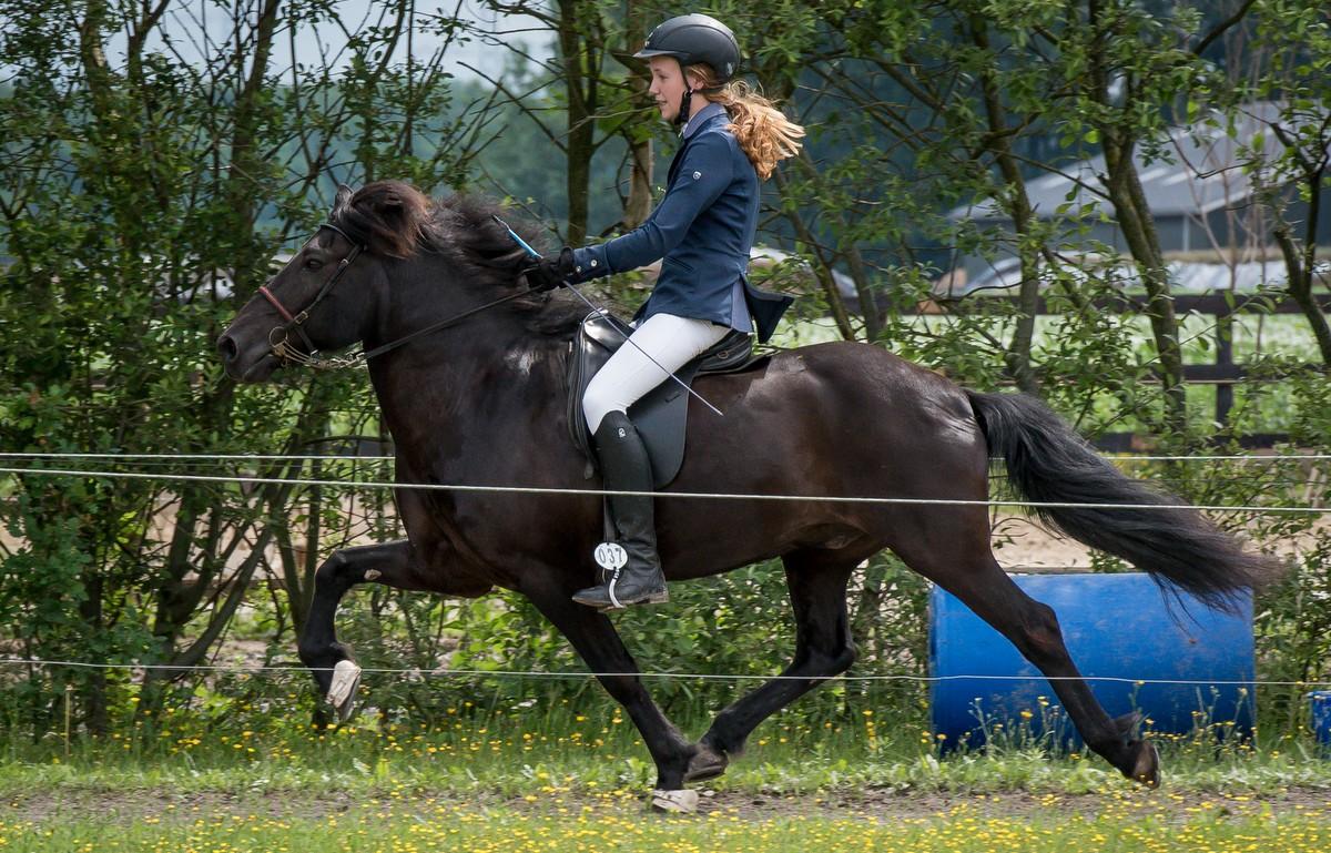 Friese amazone Imre Otter wint telgangproef bij IJRN in Exloo