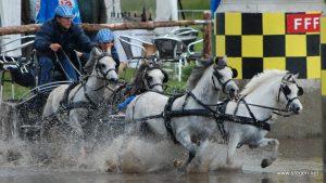 Menner Jannes Kinds met vierspan pony's naar WK in Minden