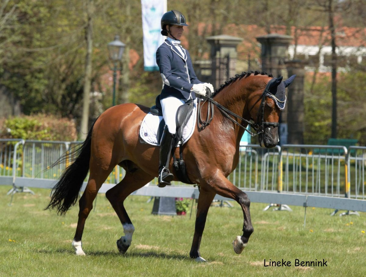 Laura Zwart won met Lumen Dylan beide Z2-proeven op het CH Roden.