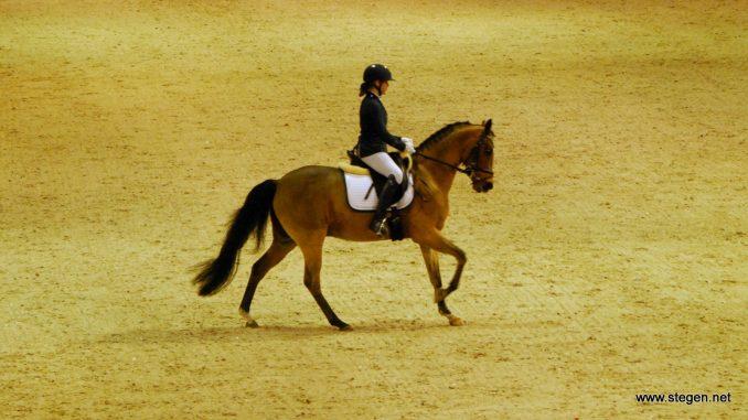 Lisa Hamminga met haar pony Dekro's Anigo (archieffoto).