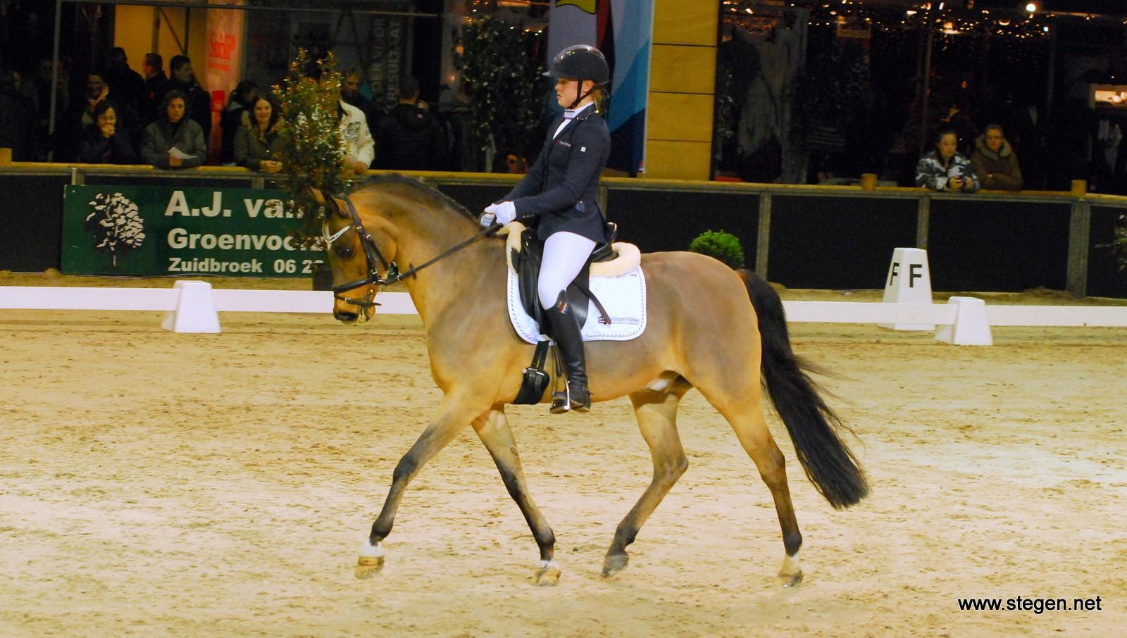 Finale pony's DCIG voor Lisa Hamminga en Jonker's Anigo
