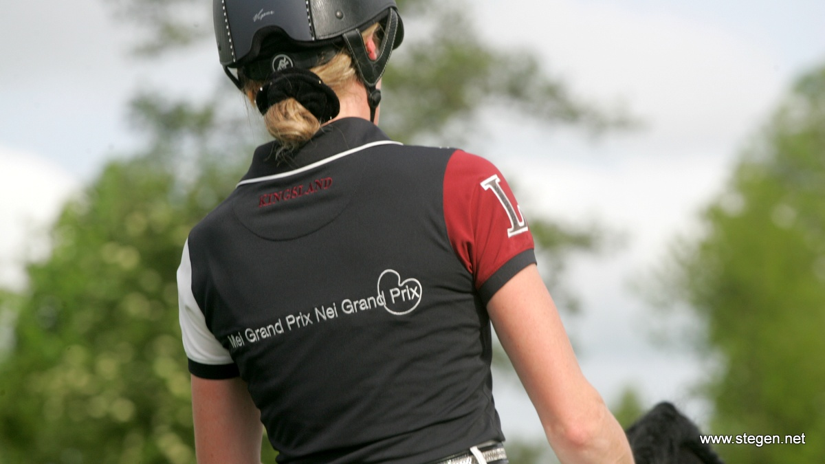 Het Friese opleidingsprojectMei grand prix nei grand prix krijgt een sterk vervolg.