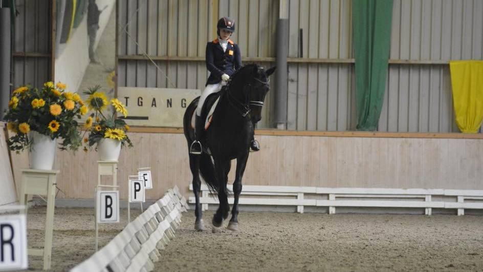 Maaike ten Hoor met haar nieuwe paard Winder-Don. foto: Facebook