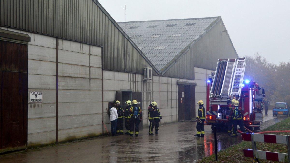 Paarden ongedeerd bij brand in hippisch centrum Exloo