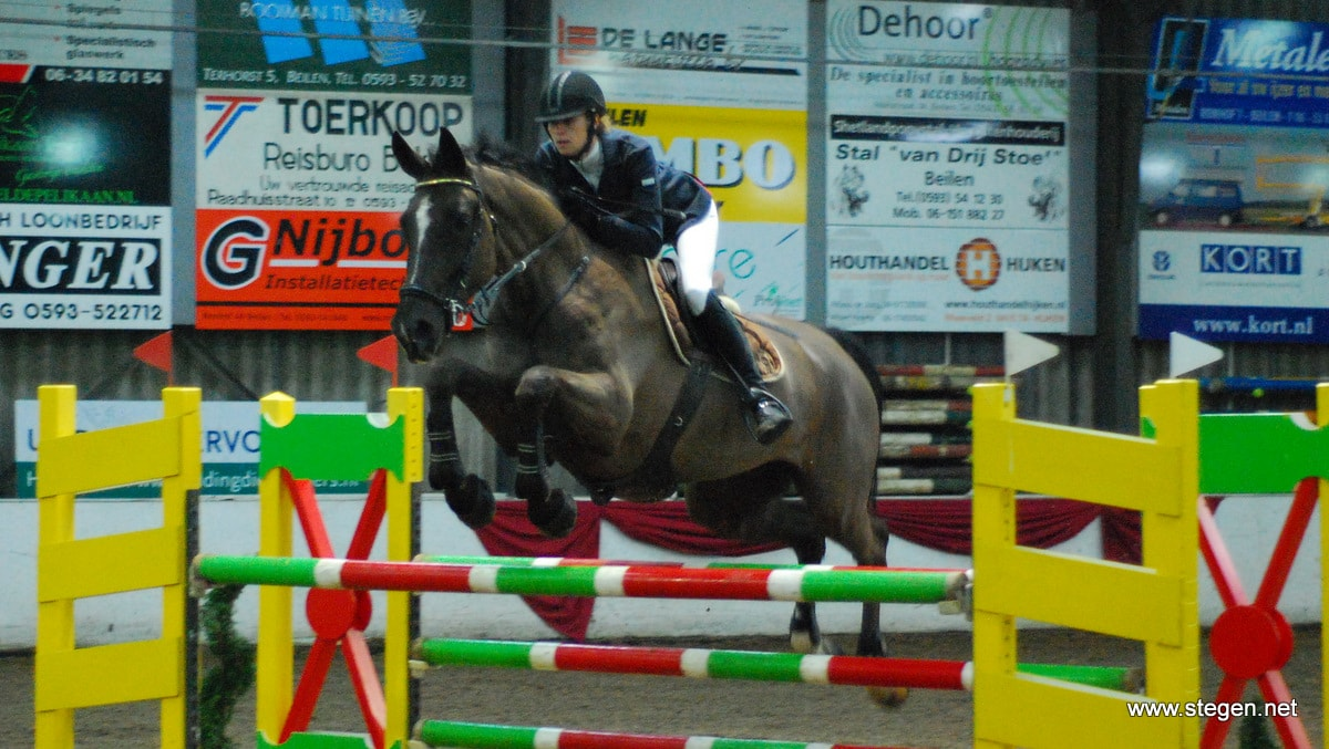 CH De Wijk. Marcelle Hokse won in De Wijk de ZZ-klasse met VDR's Dancing in the Dark (archieffoto).