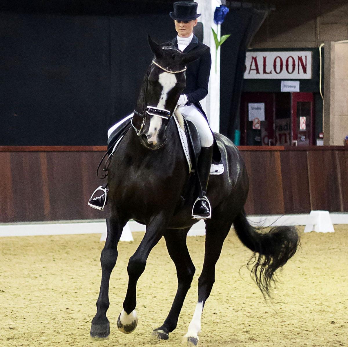 Marieke van der Putten won met Ambria bij Indoor Tolbert de U25/Grand Prix.