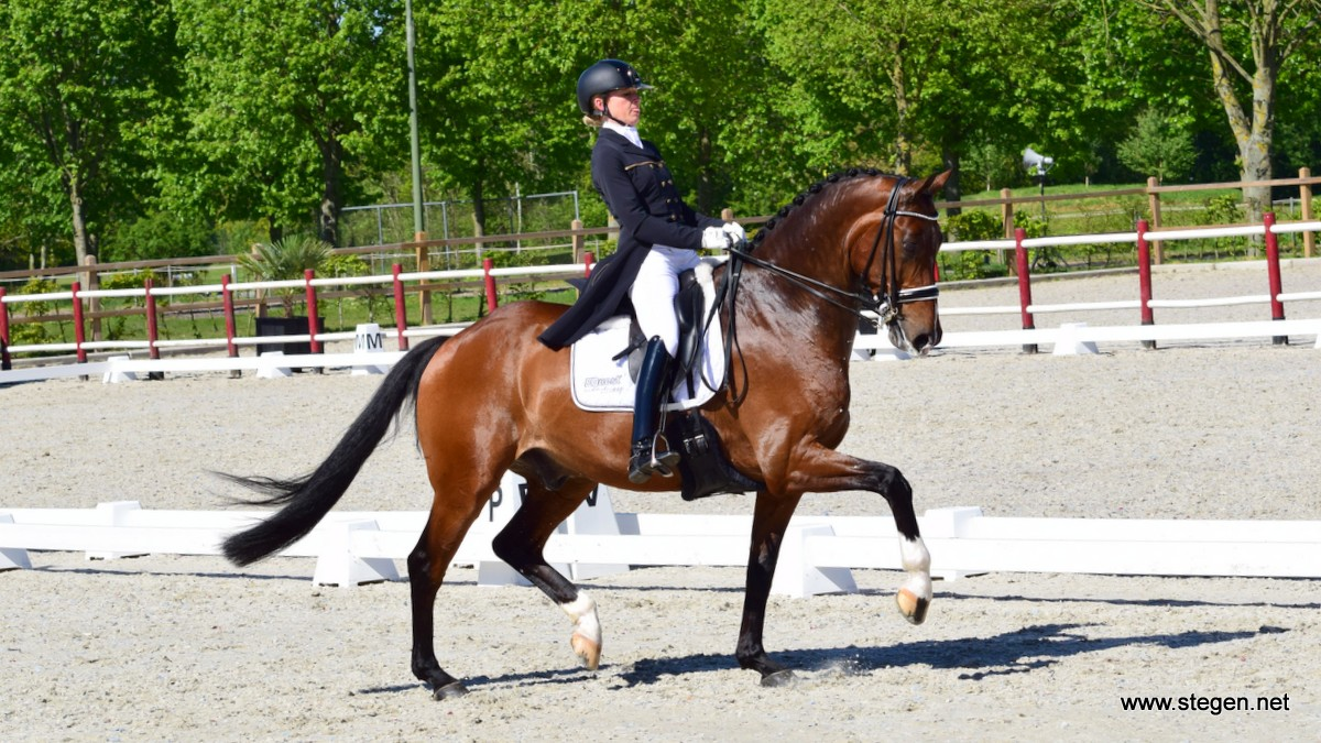 Marlies van Baalen won met Ben Johnson de Grand Prix tijdens Dutch Topsport Dressage Exloo.