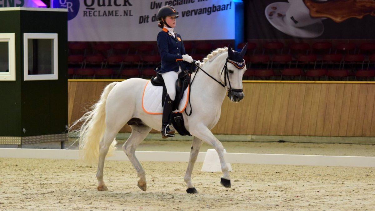 Micky Schelstraete werd tweede bij de pony's met Elin's Noncisdador.