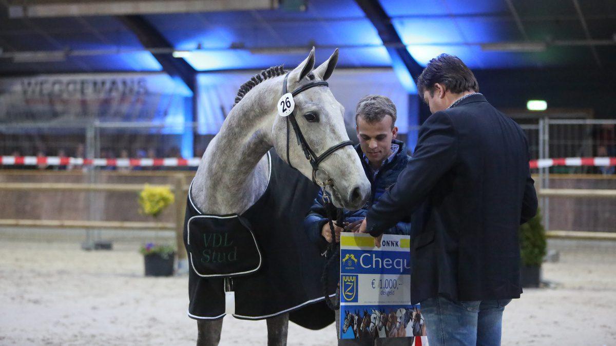Kirian (v. Emir R) werd ONNK-kampioen bij de springpaarden.