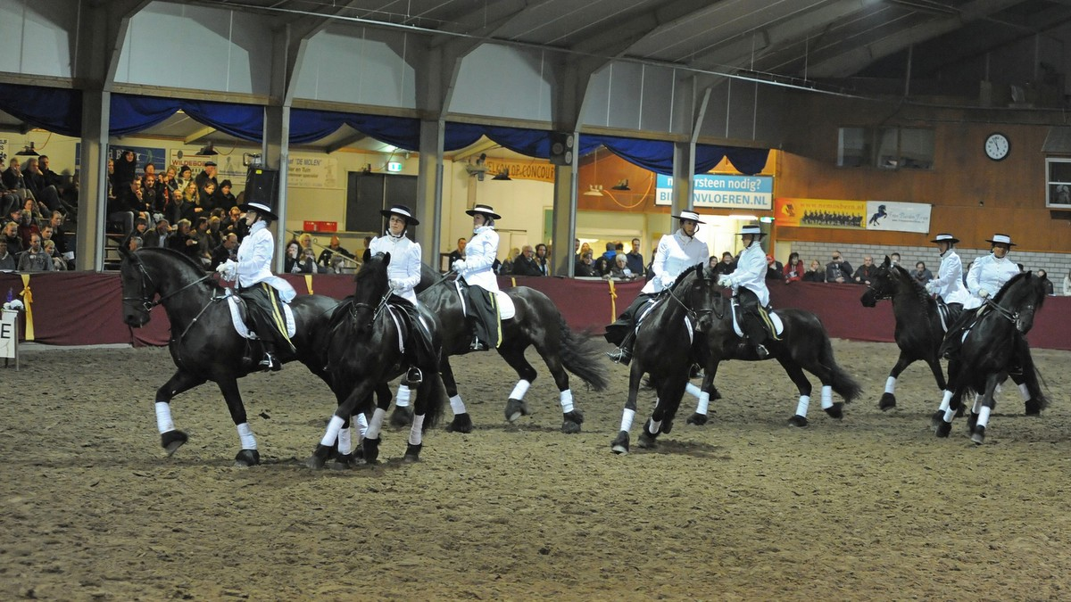 Tijdens Pegasus, het Drents gala van het paard, zijn diverse shows en demonstraties te zien.
