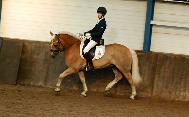 Ponytitels dressuur in Groningen verdeeld