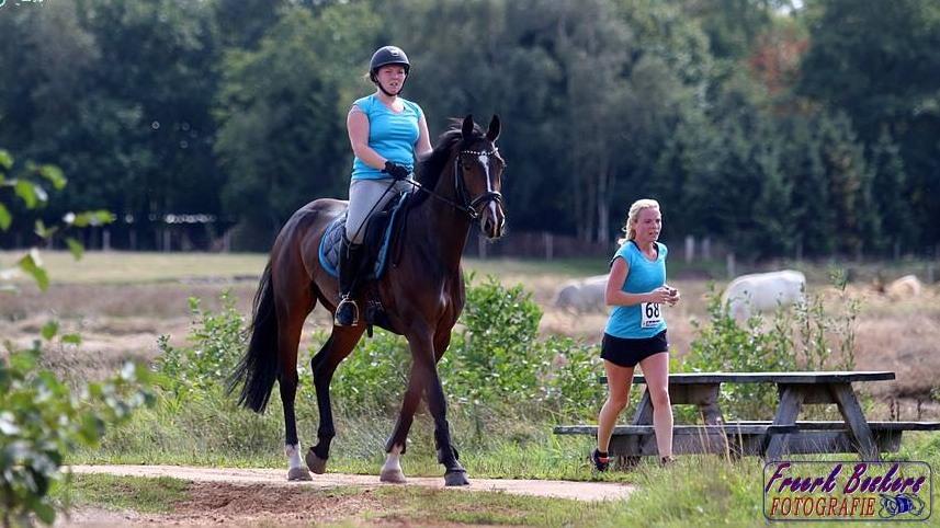 Recordaantal deelnemers bij geslaagde Ride en Run Onstwedde