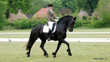 EK-dressuur voor Friese paarden in Haskerhorne draagt bij aan promotie 'zwarte parels'