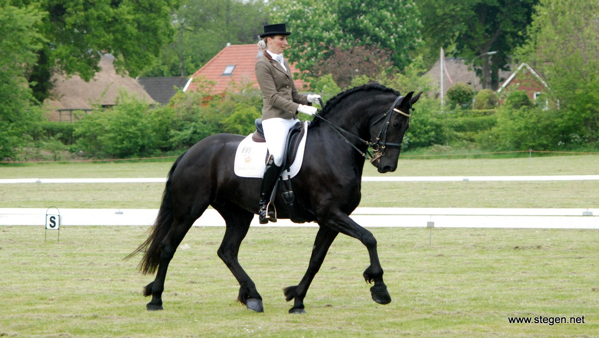 Friese paarden zijn populairder dan ooit in de dressuursport. Op de foto Sarina Mayr.