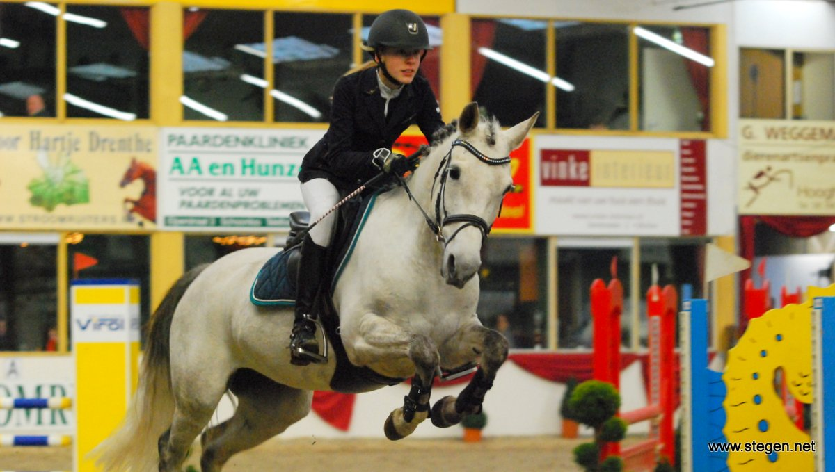Sterke Drentse kampioenen in zwaarste rubrieken pony's