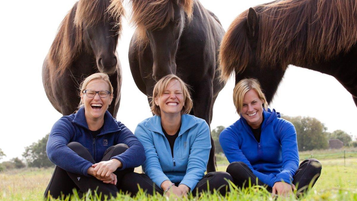 Exloo gastheer voor internationale Youth Cup IJslandse paarden