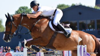 Suzanne Tepper domineert finale Hippos Concours Appingedam