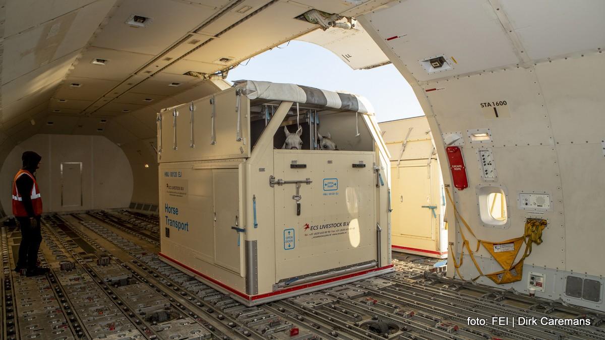 Wereldruiterspelen Tryon. De paarden worden in een speciale box in het vliegtuig geschoven.
