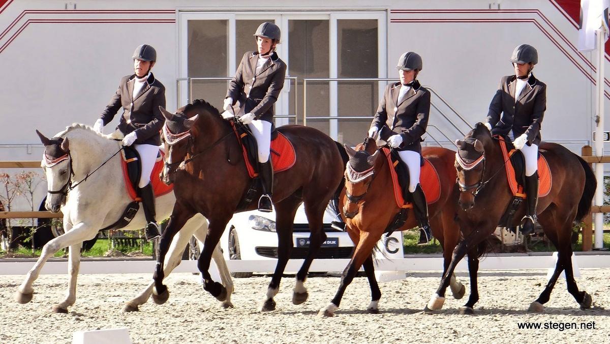 Meertallen populair in Drenthe: 'in teamverband iets neerzetten is erg leuk'