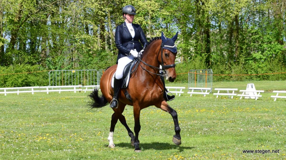 Viola Nijland was succesvol in de Z1 in Ter Apel met haar paard Angel Aleiga.