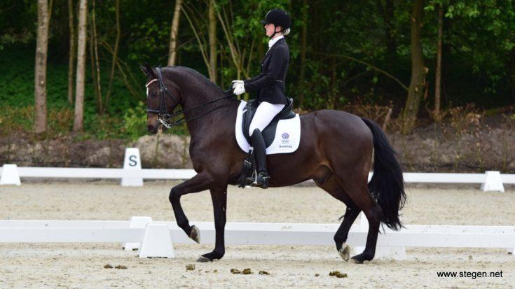 Topsport Dressuur Exloo. Zoë Zwiggelaar behaalde in Exloo de hoogste score in de ZZ-licht met haar paard Fidarsi Rossi Zrz.