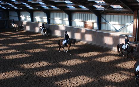 Het afschaffen van de lage BTW is funest voor de paardensector, aldus de sectorraad.