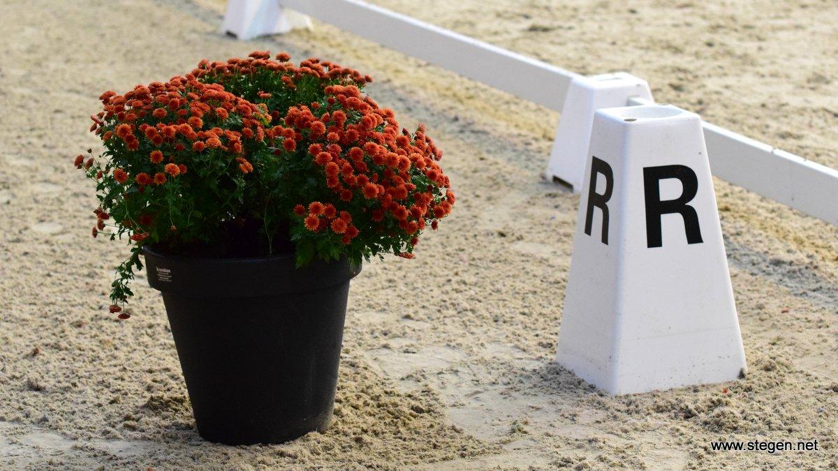 Margriet Koopmans piekt op 'vroeg' Fries kampioenschap