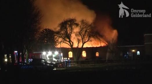 Paarden dood door vuurzee in Babberich