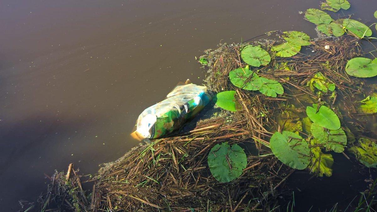 Dood veulen in plastic zak gevonden in Smeerling