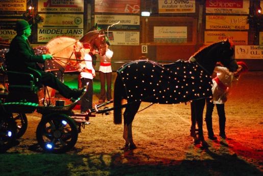 De menners hadden hun paarden sfeervol met lampjes behangen.