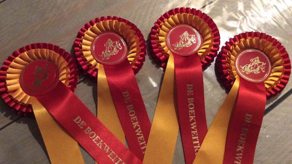 Pony-amazone Joke Bakker naar dubbele winst bij Dalerveense Ruiterdagen