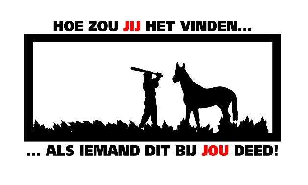 Twee paarden mishandeld in Gieterveen
